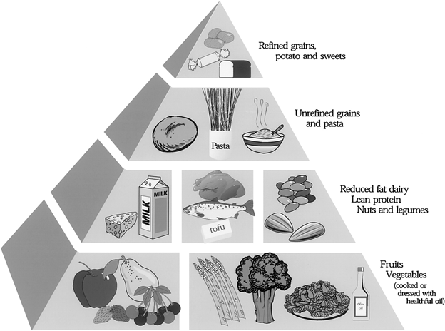 Glycemic Index Pyramid Diet Hunger