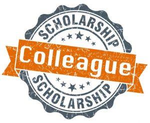 Bariatric scholarship