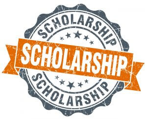 bariatric scholarship